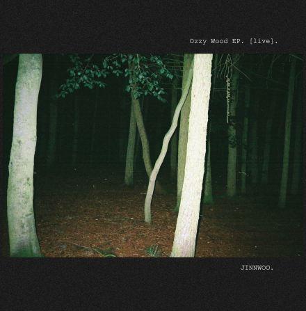 Jinnwoo_Ozzy Wood EP_jpg